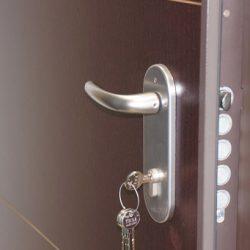kak-vybrat-bronirovannye-vxodnye-dveri-v-kvartiru-8
